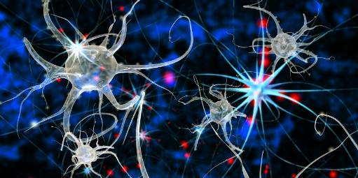 As neurociências conseguem captar aquilo que o cliente não diz – e as empresas estão utilizando essas pesquisas cerebrais para aferir o impacto de ações de marketing e comunicação